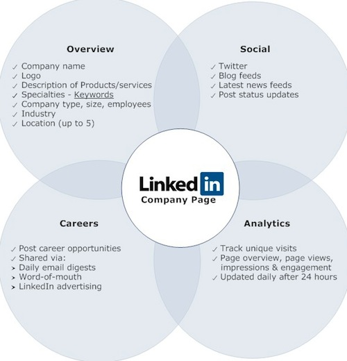 How Linkedin Company Page Analytics can give you a helping hand